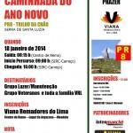 cartaz caminhada 2014